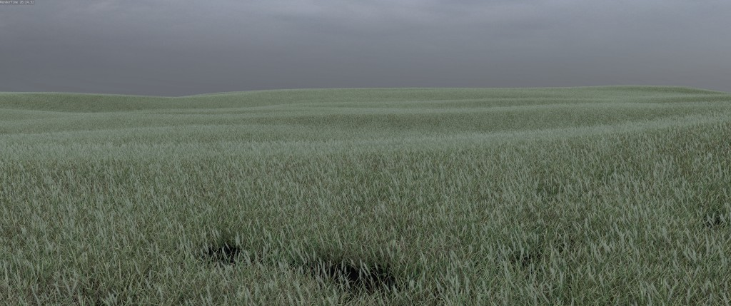 Lukas's grassy field
